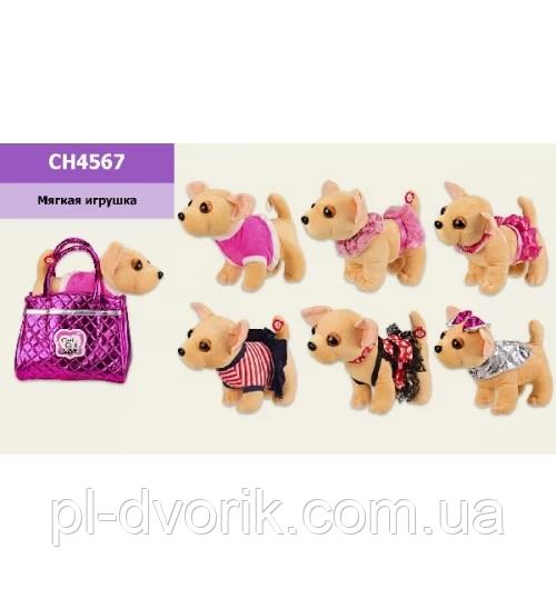 М'яка Іграшка CH4567 () Собачка В Сумочці,6 Видів,Звук,Р-Р Сумки 20*12*17 См, Р-Р Собачки - 27