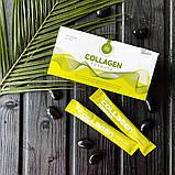 Collagen Formula для красоты кожи ,волос, ногтей и для  необходимого  питаниея  суставов, 20 стиков по 9,5гр, фото 3