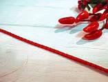Коллекционная выставочная ринговка для собак красная Red Light от Pets Couturier SIMBA, фото 3