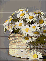 Художественный творческий набор, картина по номерам на дереве Ромашки в корзин, 30x40 см, «Art Story» (ASW087), фото 1
