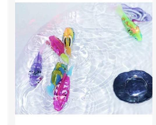 Робофиш роборыбки светящиеся рыбкаробот, фото 2