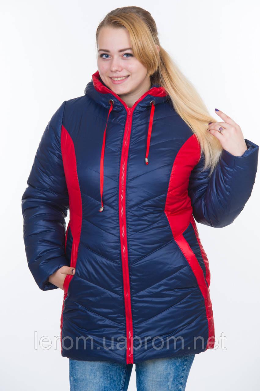 Куртка зимняя женская батал зима-2016 синий+красный