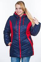 Куртка зимняя женская батал зима-2016 синий+красный, фото 1
