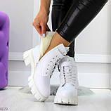 Трендовые высокие белые женские зимние ботинки на молнии + шнуровка, фото 4