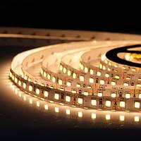Светодиодная лента BIOM Professional G.2 12В 2835-60 теплый белый, негерметичная, 1м