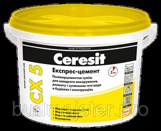 Суха суміш Ceresit CX 5 для анкерування 2 кг