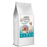Корм для собак великих порід гіпоалергенний Форель, овочі 10кг Home Food