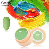 Гель-краска Canni №604 ( бледно-салатовая) 5 мл