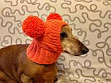 Шапка для собаки с двумя помпонами одежда для собак, фото 2