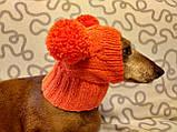 Шапка для собаки с двумя помпонами одежда для собак, фото 7