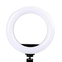 Светодиодная кольцевая лампа Pro Ring Fill Light селфи кольцо 20см 3 режима с пультом