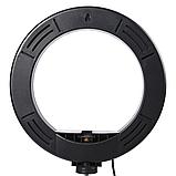 Светодиодная кольцевая лампа Pro Ring Fill Light селфи кольцо 20см 3 режима с пультом, фото 2