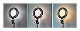 Светодиодная кольцевая лампа Pro Ring Fill Light селфи кольцо 20см 3 режима с пультом, фото 3