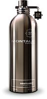Парфюм унисекс Montale Greyland 50ml(test), фото 1