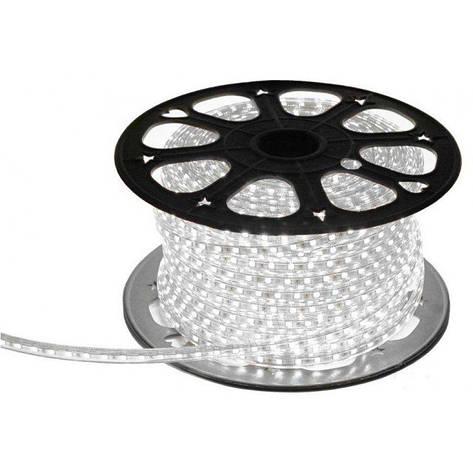 Светодиодная LED лента гибкая 220V PROlum™ IP68 2835\120, фото 2