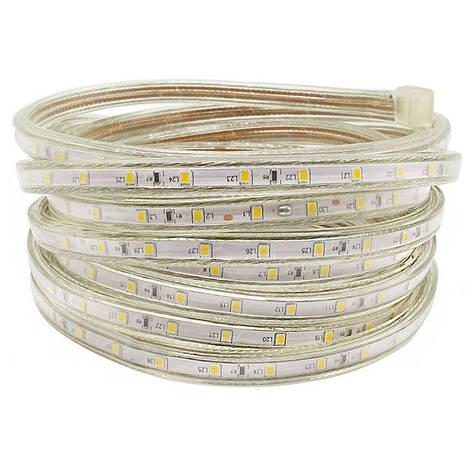 """Светодиодная LED лента гибкая 220V PROlum™ IP68 2835\60 Series """"S"""", Белый (5500-6000К), фото 2"""