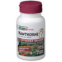 Боярышник 300мг, Herbal Actives, Natures Plus, 30 таблеток