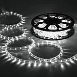 Гирлянда диодная Дюралайт Белый  Шланг 10 метров, фото 3