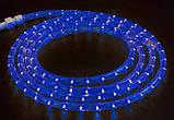 Гирлянда діодний Дюралайт Синій Шланг 100 метрів Вологозахищена, фото 3