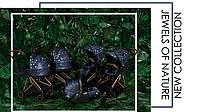 Анонс новой коллекции Cybex - Jewels of Nature