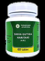 Шива гутика харитаки - слабительное, ожирение; лишний вес, паразиты, депигментация, псориаз, лепра, и т. д.