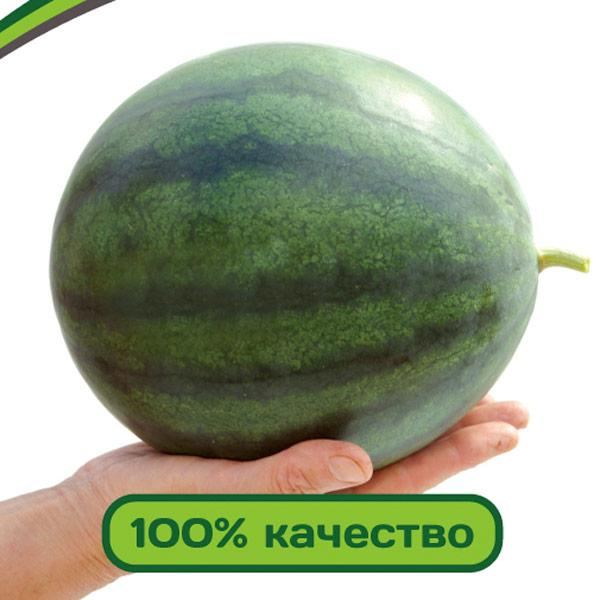 Семена Арбуз Юнкер F1  5шт, Партнер