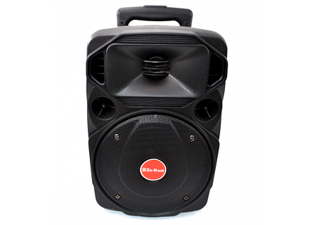 Акустическая портативная колонка комбик Su-Kam BT 80D + 2 микрофона, фото 2