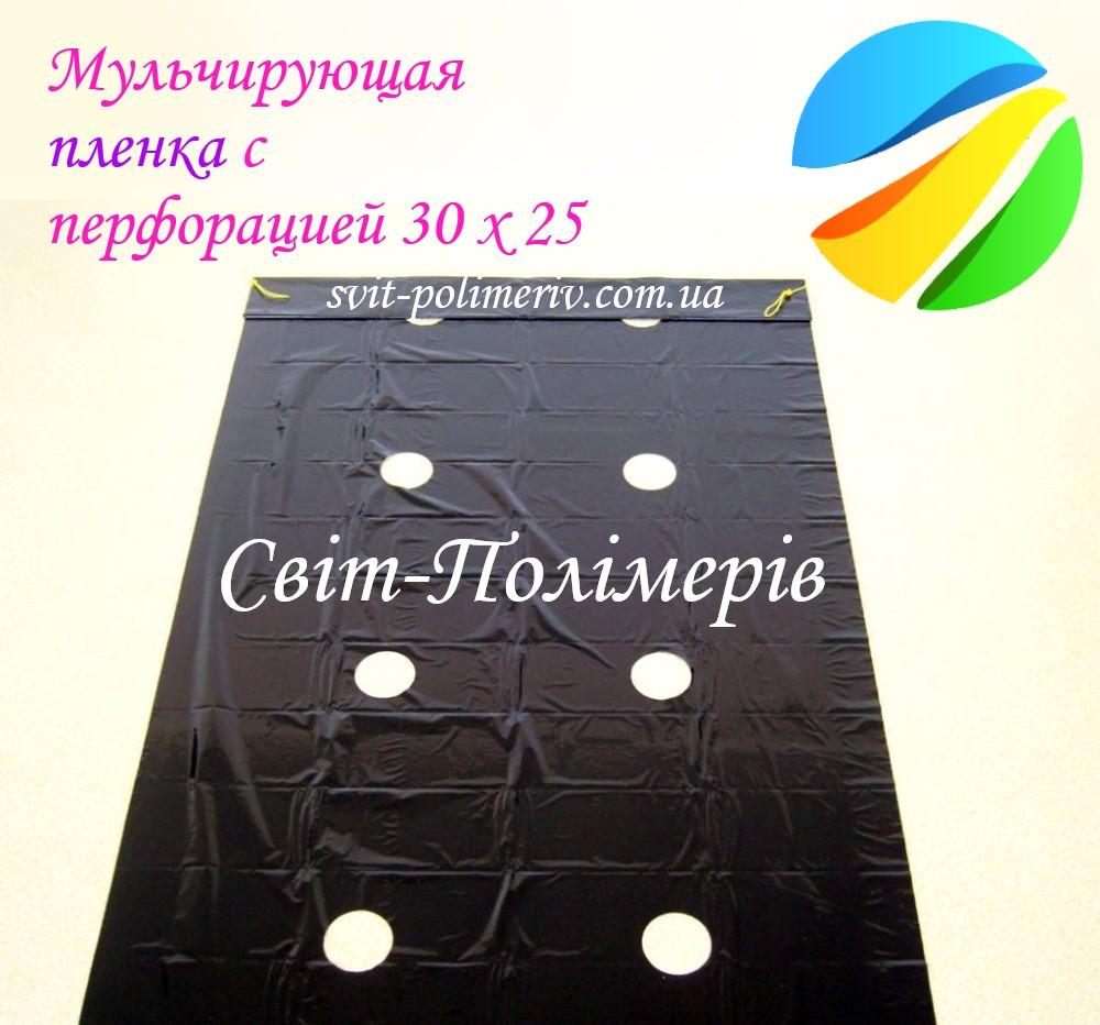 Film de mulcire Moldova cu găuri 30 x 25 (50 microni)