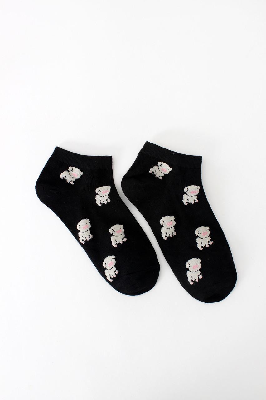 Женские носки FAMO Носочки Бабз черный 36-39 (NF-2002-23)