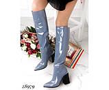 Сапоги , демисезон на устойчивом квадратном каблуке, фото 2