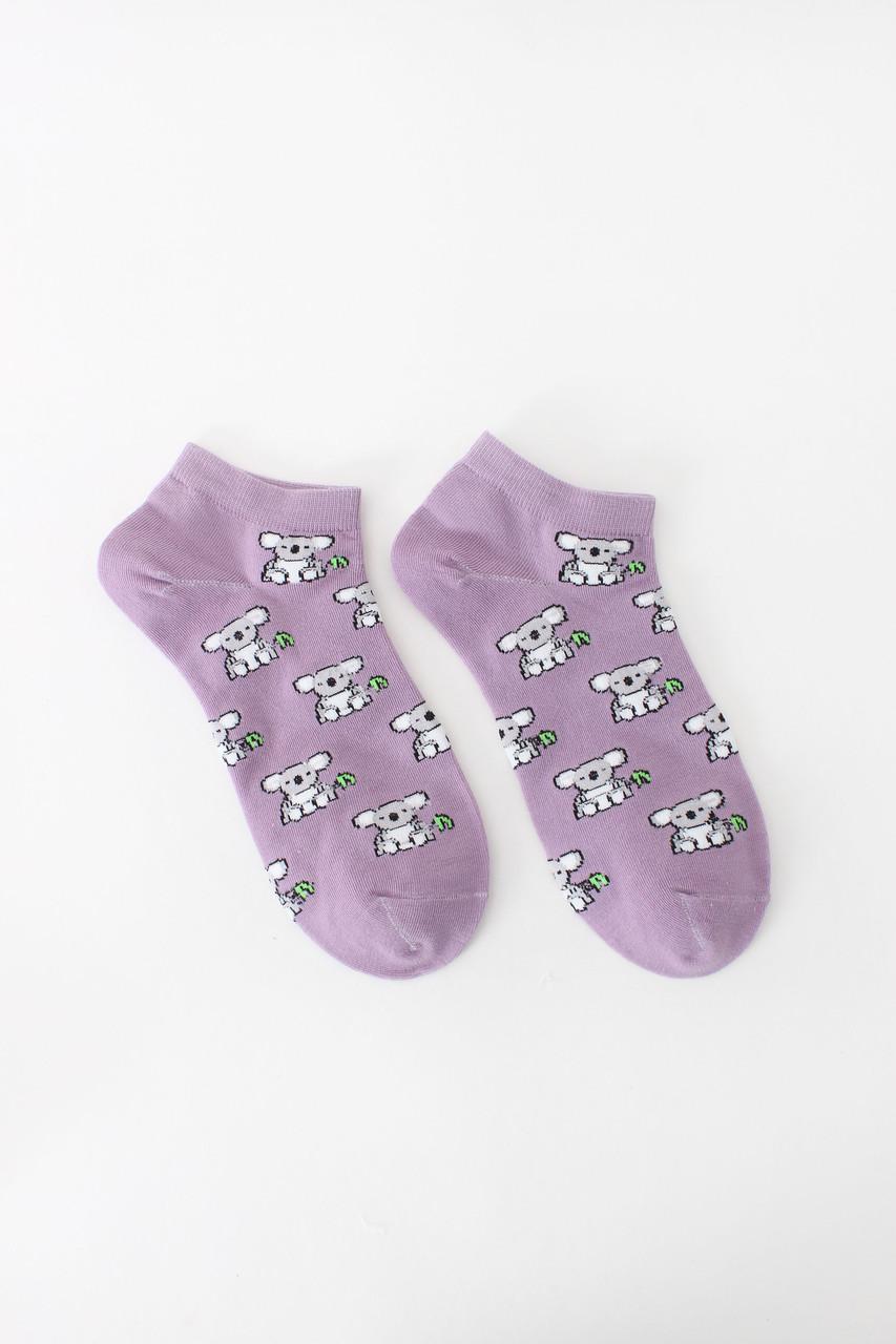 Женские носки FAMO Носочки Доун лиловый 36-41 (NF-2002-17)