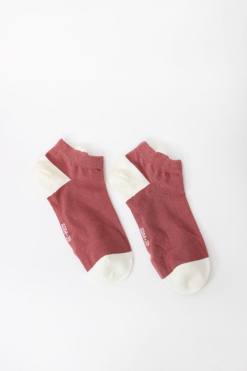Женские носки FAMO Носочки Люче пудровые 36-39 (V280-1)