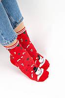 Яркие новогодние носочки средняя посадка