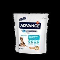 Сухой корм Advance Mother Dog&Initial для щенков, беременных и кормящих собак всех пород с курицей, 0,8 кг