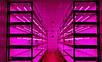Фитолампа светодиодная Т8 -2835-1.2F 18W G13 IP20 (fito spectrum led) Код.58833, фото 5