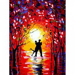 """Картина по номерам """"Ночные танцы"""", Холст на Деревянном подрамнике, Акриловые Краски, Кисти, Размер: 30х40см, 1"""