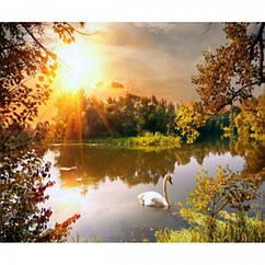 """Картина по номерам """"Одинокий лебедь"""", Подарочная Упаковка, Холст на Деревянном подрамнике, Акриловые Краски,"""