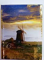 Ежедневник А6, не датированный, 18573, Феникс+, тиснение фольгой