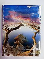 Ежедневник А6, не датированный, 18572, Феникс+, тиснение фольгой