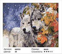 """Набір для малювання за номерами """"Пара вовків"""" 40х50 см"""