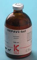 Гепатопротектор для собак и кошек Hepavi-Cel 100мл