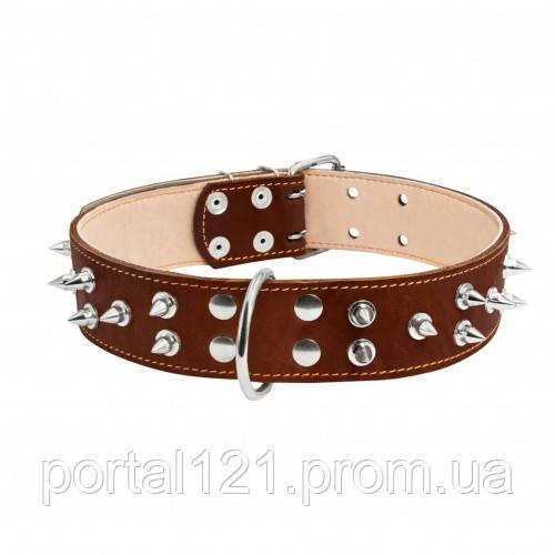 Ошейник двойной с шипами для собак 45 мм, 56-68 см, коричневый