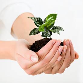 Засоби захисту рослин, добрива