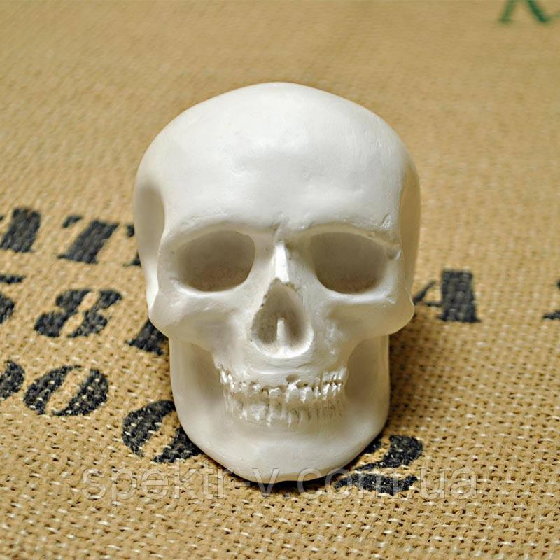 Маленький череп из гипса (статуэтка-фигурка) для раскрашивания
