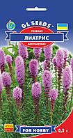 Ліатріс рожевий багаторічний красивоквітнучі трав'яниста рослина з суцвіттями-свічками, упаковка 0,2 г