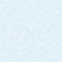 Обои акрил 0077306 голубой с окраш.покр.