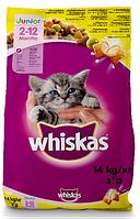 Whiskas (Вискас) Junior для котят с курицей 14 кг