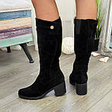 Жіночі зимові чорні замшеві чоботи на стійкому каблуці, фото 3