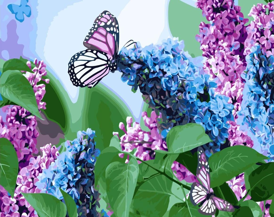 Картина по номерам Бабочки и сирень 40х50 Yarik's (без коробки)