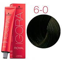 Перманентная крем-краска IGORA ROYAL Naturals, Schwarzkopf Professional 60 мл. 6-0 Темно-русые натуральный